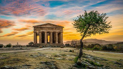 Tempio della Concordia - Valle dei Templi - Sicilië  von Teun Ruijters