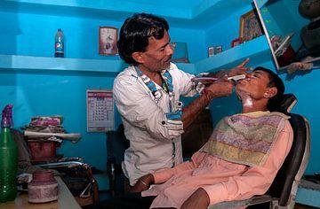 India: Kappert (Jorawarpur) van Maarten Verhees