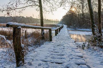 Besneeuwde brug van Maurice Vroegrijk