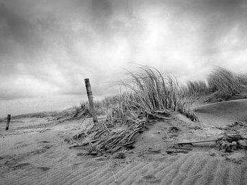 Na de storm von Dirk van der Plas