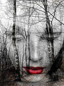 Het gezicht in het bos