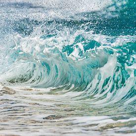 In The Waves of Change I van Laura Vink