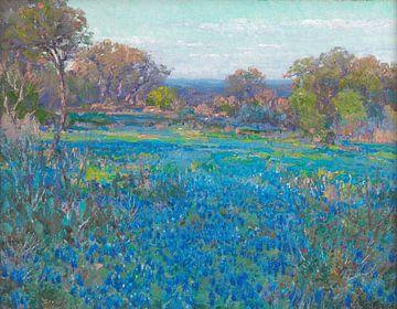 Ein Feld von Blue Bonnets, Sonnenlicht am späten Nachmittag, Julian Onderdonk