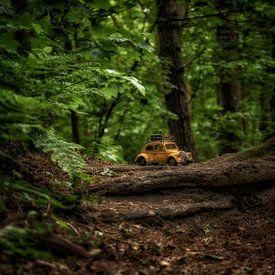 Bois géant 1 sur Kirsten Scholten