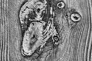 Verweerd hout in zwart wit van