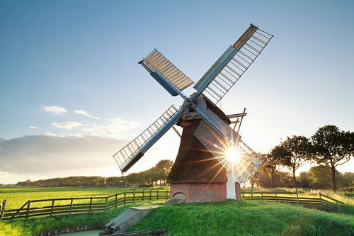 morning summer sunshine behind Dutch windmill