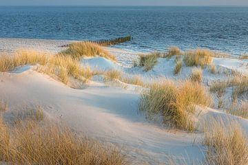 Ochtendstemming in de duinen van het natuurgebied Ellenbogen, Sylt van Christian Müringer