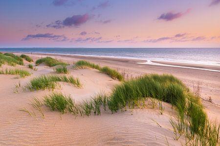 Dunes près de Ouddorp sur Sander Poppe