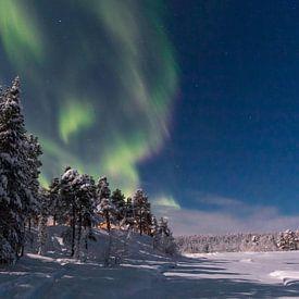 Noorderlicht van Rene Wolf