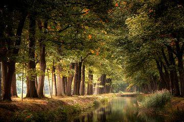 Someday Soon van Kees van Dongen