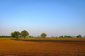 Gepflügtes Feld von Johan Vanbockryck