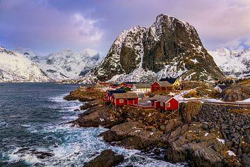 Hamnøy in Winter, Noorwegen van Adelheid Smitt