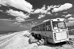 Beachbus van