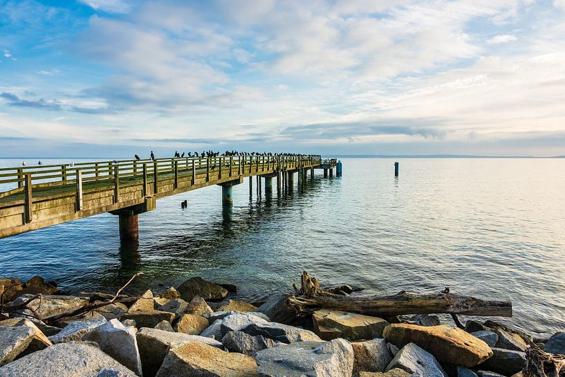 Pier on the Baltic Sea coast in Sassnitz, Germany van Rico Ködder