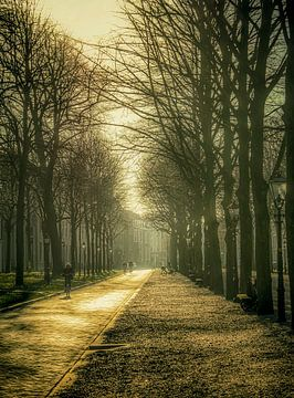 Dreamy The Hague van Victoria Barberien