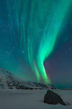Noorderlicht in de donkere sterrenhemel in de winternacht van Sjoerd van der Wal