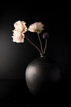 Stilleven Zwarte vaas met roze klaprozen van Gaby Hendriksz