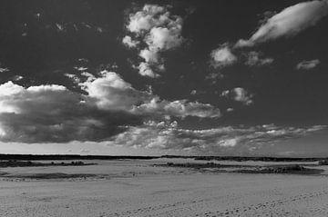 Zandvlakte von Sander Strijdhorst