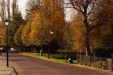 Herfst in de straat van Robert Lotman