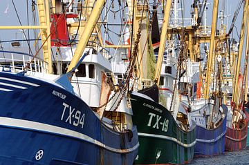 Vissersvloot Texel van Ronald Timmer