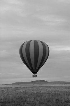 Heißluftballon von Bart van Mastrigt