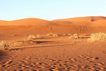 Verstild landschap in de woestijn,  Sossusvlei, Namibie van Inge Hogenbijl
