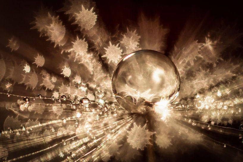 Water druppel op een pluisje met stervormige bokeh van Bert Nijholt