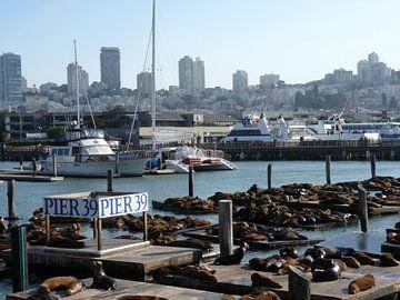 Pier 39, San Francisco, California, USA van Jeffrey de Ruig