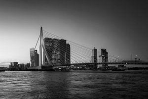 Panorama van de stad Rotterdam en de Erasmusbrug over de Nieuwe Maas bij zonsopkomst