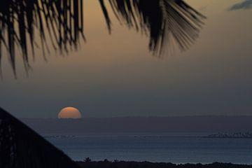 zonsondergang in mozambique van Ed Dorrestein