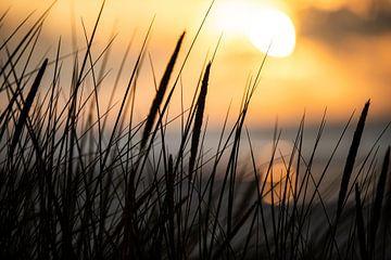 Zonsondergang op Ameland van Arjan Boer
