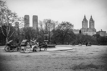 Central Park von Maikel Brands