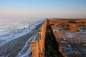 Winter von Welmoed van der Meer