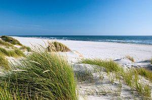 Nordsee - Dünenlandschaft
