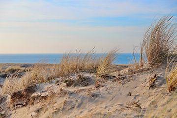 Zandduin met zee van Micky Bish
