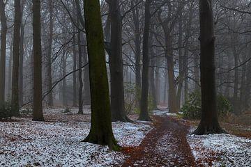 Wintermist in de Horsten von Georges Hoeberechts