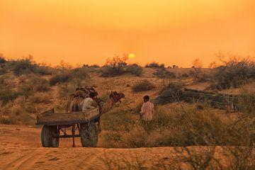 zonsondergang in de woestijn in India van Hilda booy