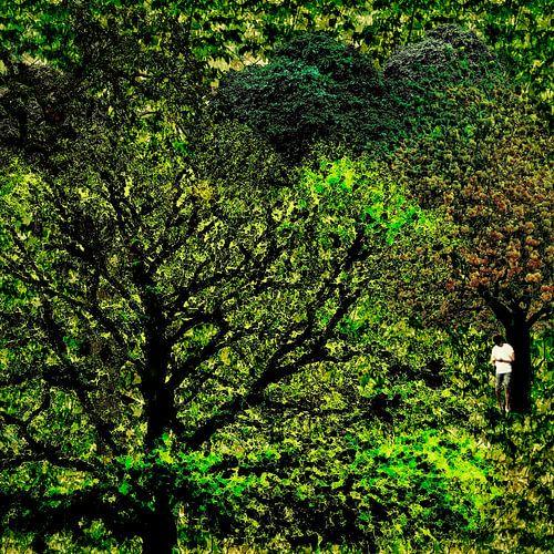 Geen bereik (man met smartphone in een bos)