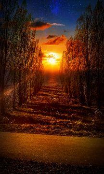 Zonsondergang in de nacht van Goud Vis