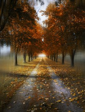 Autumn Lane van