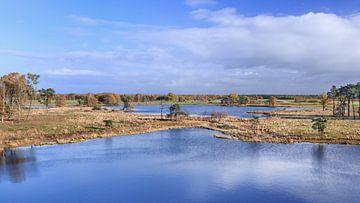 Panoramisch uitzicht op een wetland tegen een blauwe bewolkte hemel van Tony Vingerhoets