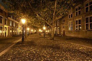 Leiden bij nacht van Diederik van Duijn