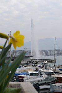 Meer van Geneve