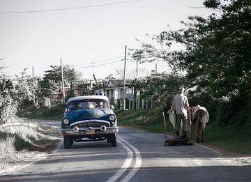 Onderweg, oldtimer en man met ploeg en rund delen het asfalt