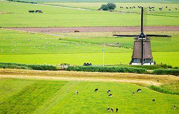 Hollands landschap met molen vanuit de lucht sur Paul Teixeira