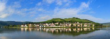 Moezel panorama op een zomerochtend met wolken van Dennis van de Water