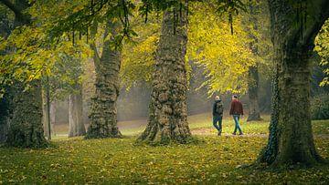 Wandeling door het Noorderplantsoen park/bos van Hessel de Jong