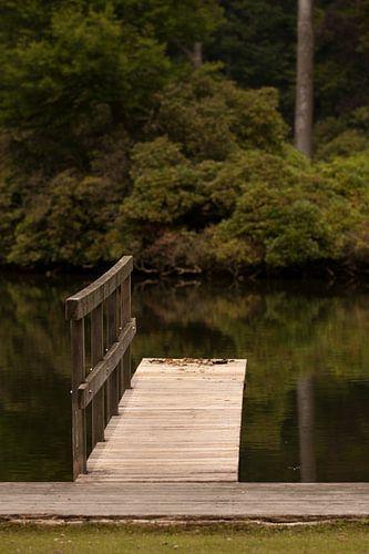 Steiger in het water