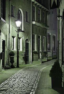 Steeg in Schiedam van Peet de Rouw