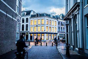 De Pausdam in Utrecht van